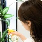 頭皮が臭いのは洗い方が悪い?原因と女性のシャンプー方法