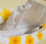 花粉症のティッシュ節約術。1日の消費量これはもったいない!